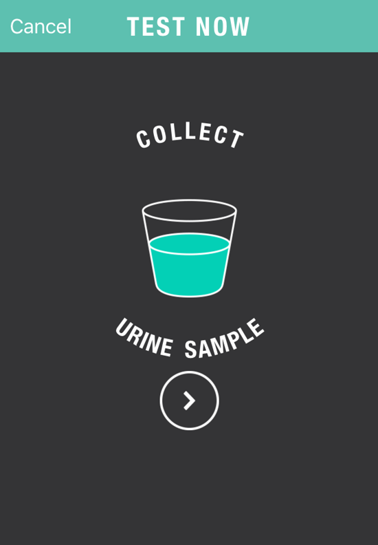 Petnostics mobile app preview collect urine. Check your pets health instantly